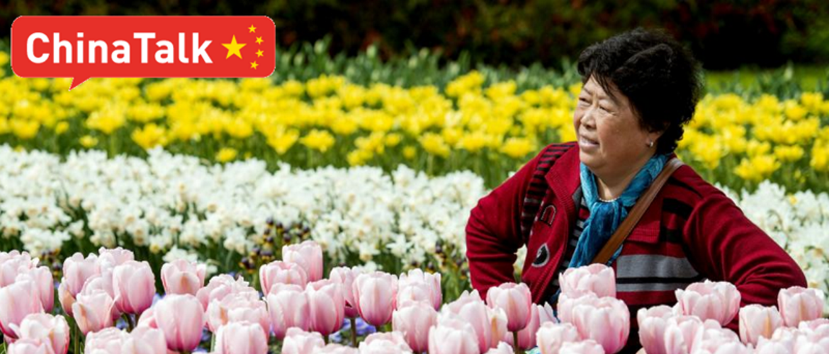Social Media & Chinese Tourism